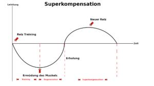 Superkomensationesmodell an einer Grafik erklärt